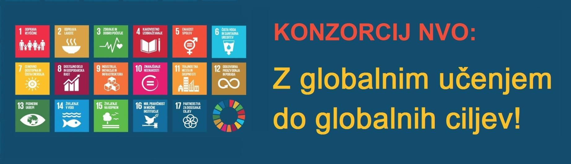 Konzorcij NVO: Z globalnim učenjem do globalnih ciljev!