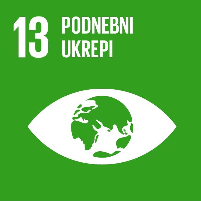 13 cilj trajnostnega razvoja in globalno učenje
