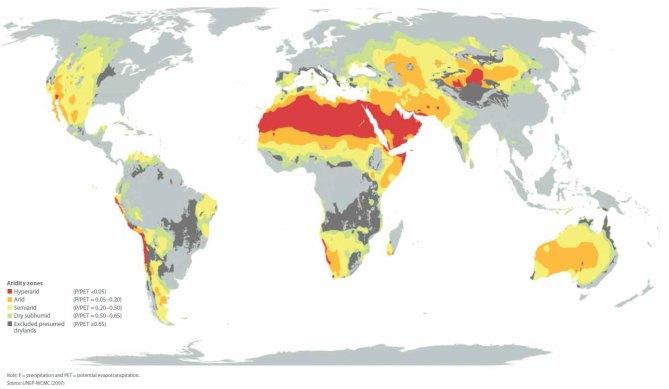 Nova študija Združenih narodov povezuje drevesa na sušnih območjih s trajnostnim razvojem