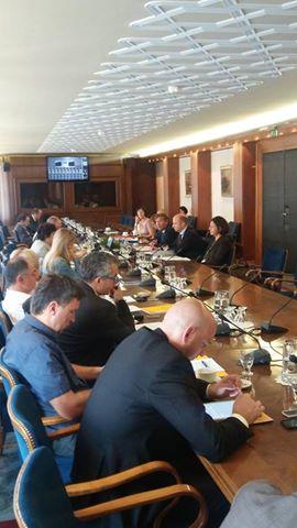 SLOGA na Odboru za zunanjo politiko