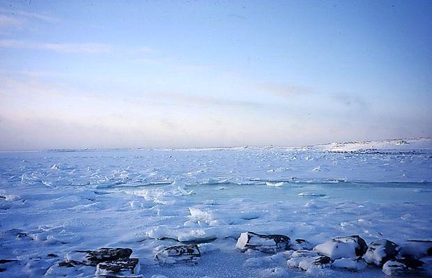 Na Arktiki zabeležili rekordno taljenje ledu