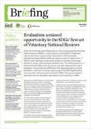 Evalvacija: zamujena priložnost v prvem nizu prostovoljnih nacionalnih ocen doseganja ciljev trajnostnega razvoja