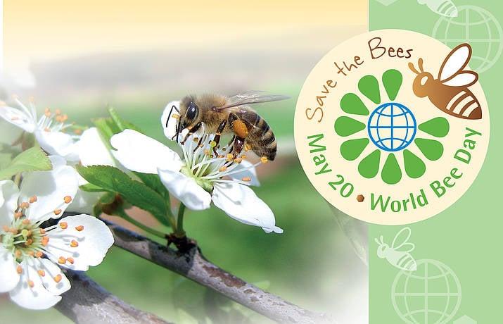 Prvi svetovni dan čebel