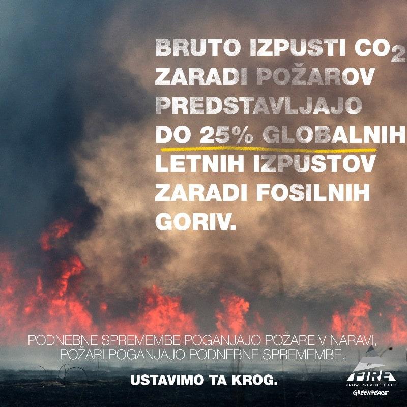 """Poročilo »Izgubljeno v dimu: podnebne posledice požarov v naravi"""""""