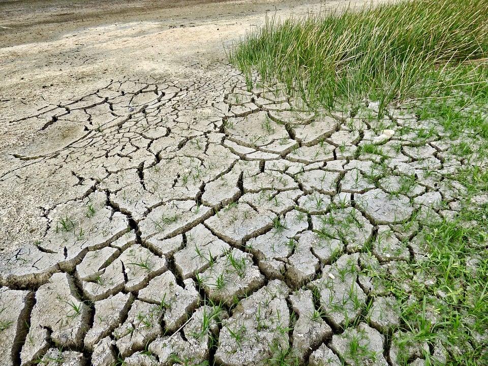 Zakaj moramo razmisliti o rabi jezika glede podnebnih sprememb?