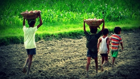 Ob svetovnem dnevu boja proti otroškemu delu