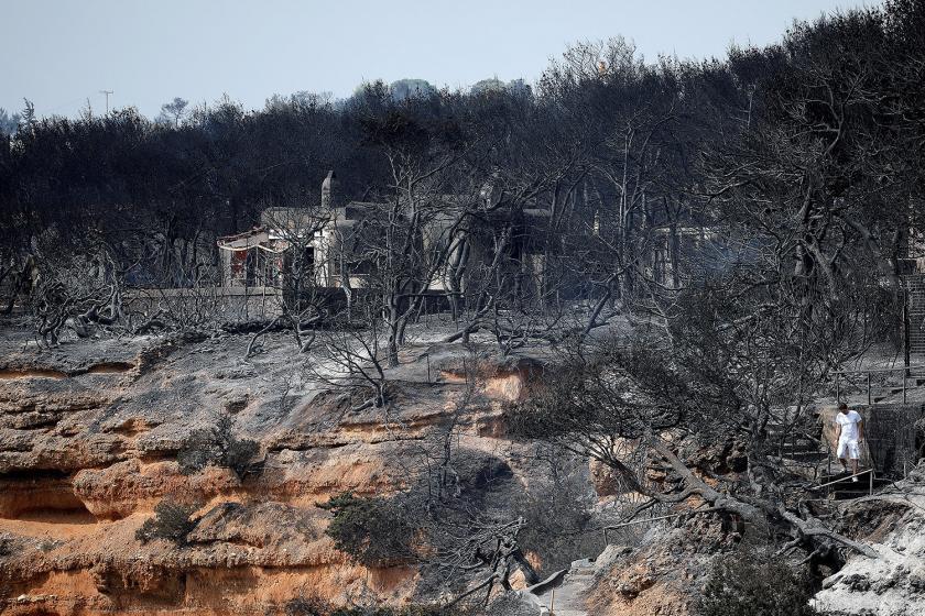 Svetovni dan okolja: Kako katastrofe prispevajo k onesnaženju okolja?