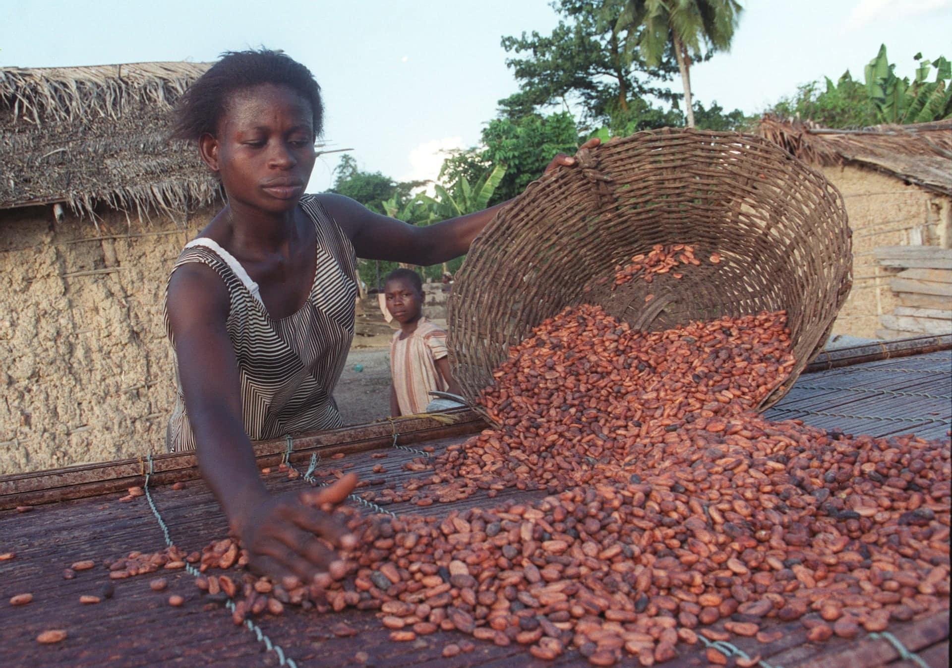 Izzivi za pravično trgovino?