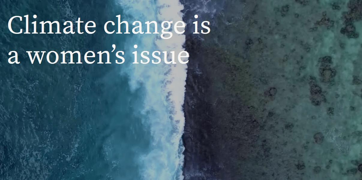 Interaktivna spletna stran na temo spola in podnebnih sprememb