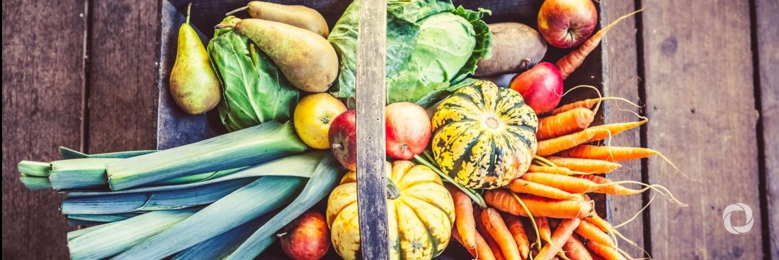 Novi mednarodni dnevi in leta posvečeni hrani in kmetijstvu