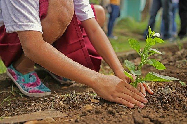 Dan za spremembe – Dobro za ljudi in planet