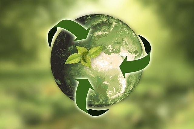 Svet za trajnostni razvoj in varstvo okolja izbira predstavnike NVO