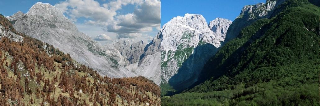 Na vroči strani Alp – življenje v času podnebnih sprememb