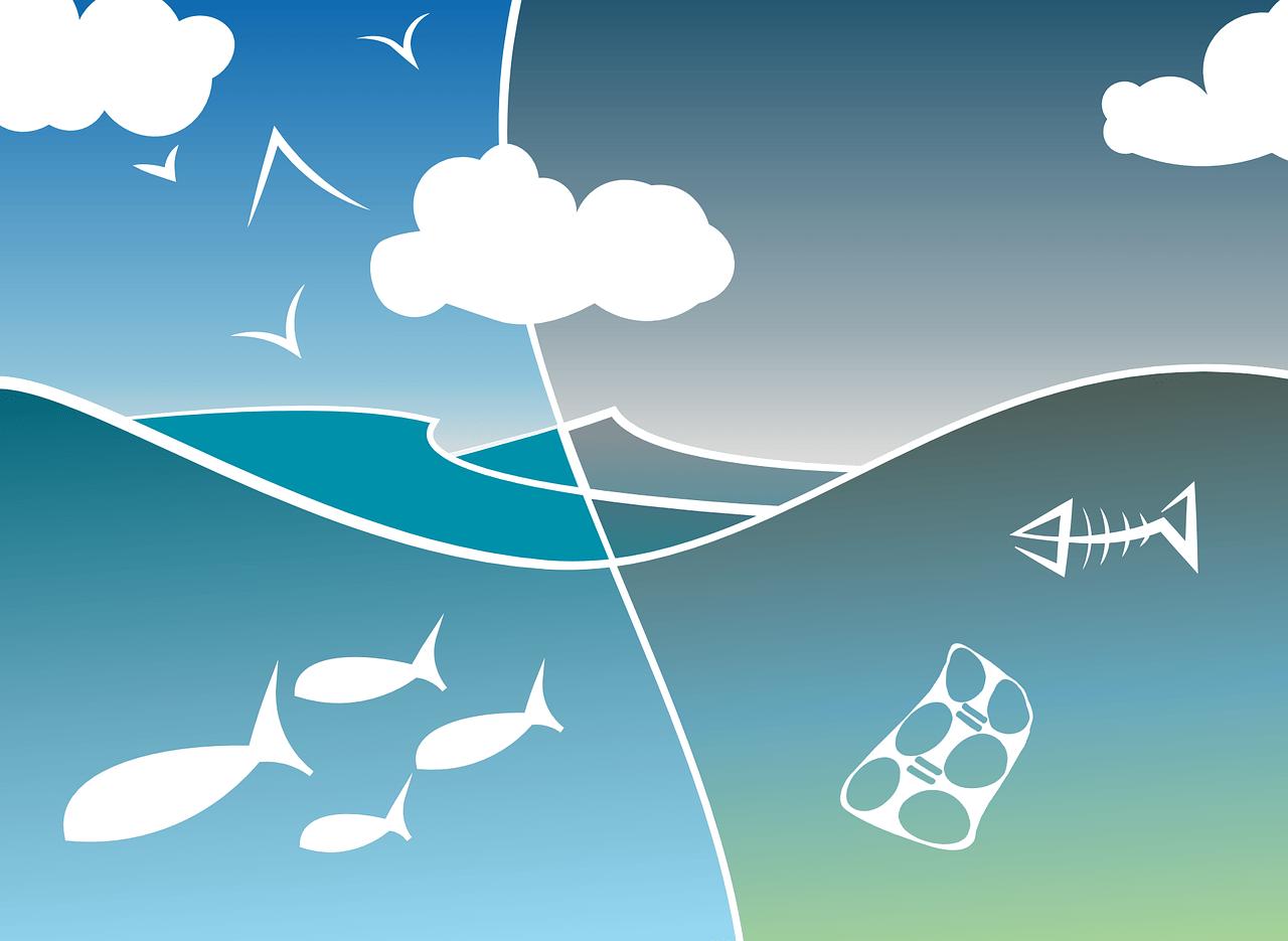 Čisto okolje. Vir: Pixabay.com