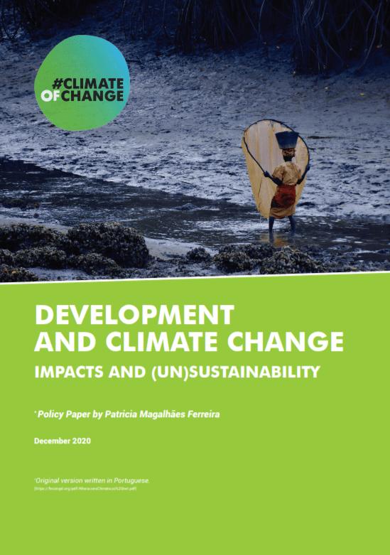 Razvoj in podnebne spremembe – vplivi in (ne)trajnostnost