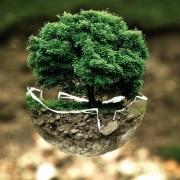 Ena Zemlja