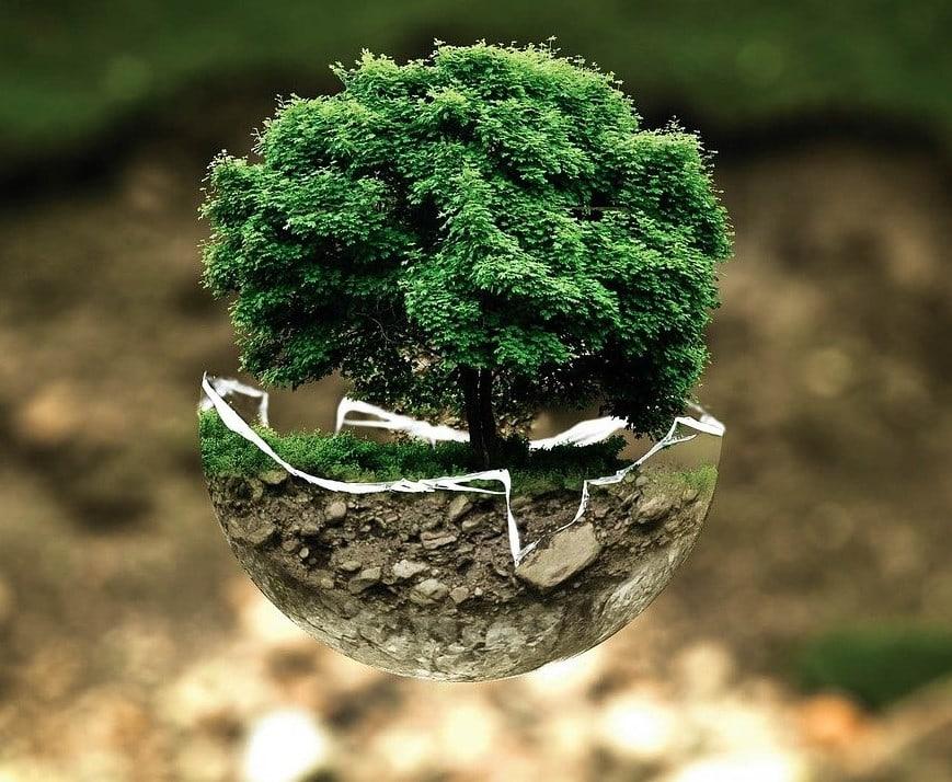 Podjetja in trajnostni razvoj: škodljivci, popravljalci in iskalci novih poti