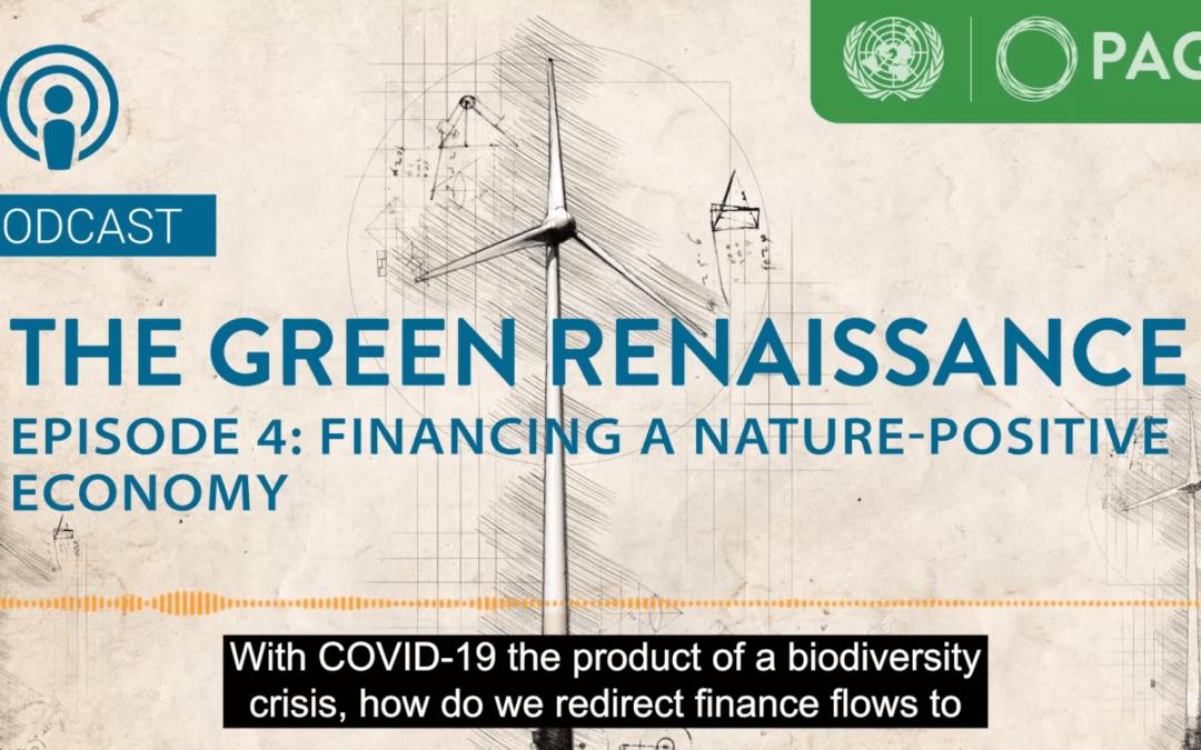 Novi#TheGreenRenaissance podkast: Trajnostno financiranje