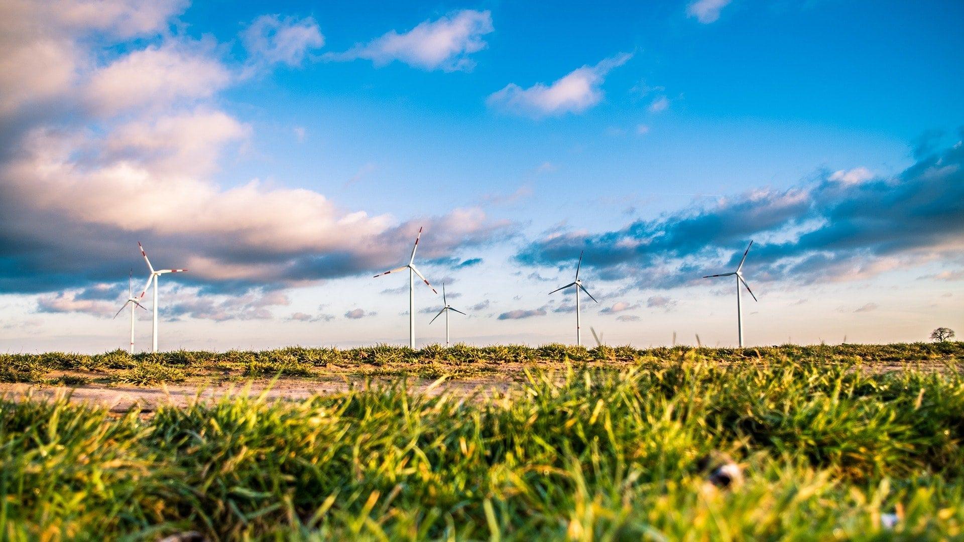 Polje, vetrne elektrarne, mlini na veter. Vir: Pixabay