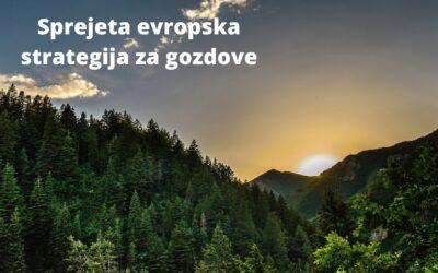 Nova evropska strategija za gozdove sprejeta