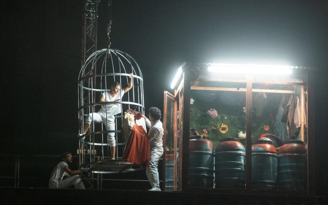 Akrobatsko-cirkuška predstava Climate of Change v Novi Gorici. Foto: Domen Grögl