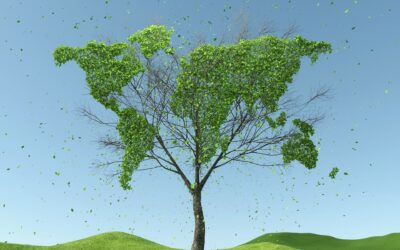 Komentar: EU trajnostnih naložb ne spodbuja dovolj