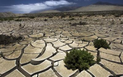 1,5 milijarde ljudi se bojuje za preživetje na preveč slani zemlji