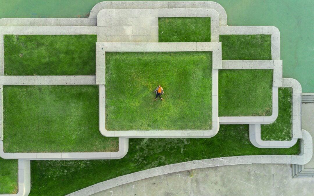 Zelena prihodnost. Foto: Martin Reisch/Unsplash